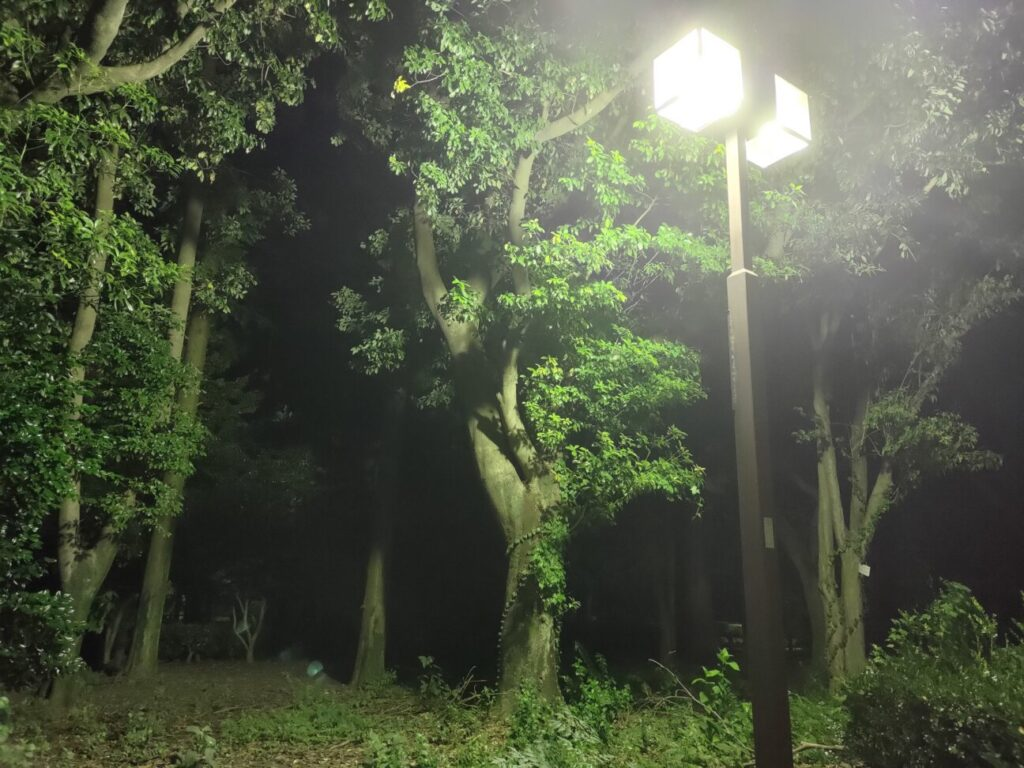 「Zenfone 8」での写真(夜景)